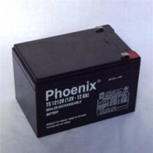 Ắc quy Phoenix TS12120 (12V-12Ah)