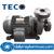 Máy bơm ly tâm đầu gang 2Pole TECO G32-50-2P-2HP