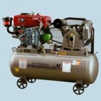 Máy nén khí PEGASUS TM-V-1.05/12.5-330L (10HP)