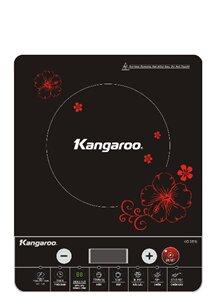 Bếp điện từ Kangaroo KG309i