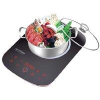 Bếp từ cảm ứng Hasuka BT6868