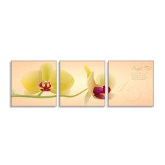 Bộ 3 tranh treo tường Thế Giới Tranh Đẹp POSTER 0035