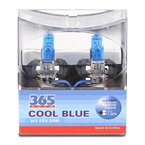 Bóng đèn 365 Auto H3 Cool Blue