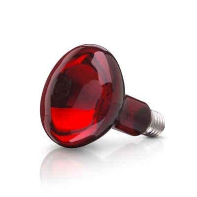 Bóng đèn hồng ngoại Philips - 100W