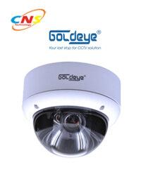 Camera Dome Goldeye MDV33LV
