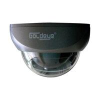 Camera Dome Goldeye SED18L