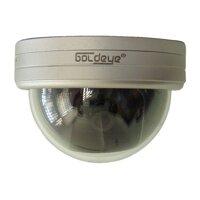 Camera Dome Goldeye SVD94L