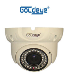 Camera Dome hồng ngoại Goldeye LWV94LV-IR
