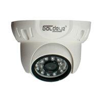 Camera Dome hồng ngoại Goldeye MWV33L-IR