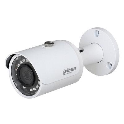 Camera IP Dahua DS2230FIP