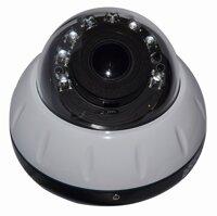 Camera IP Dome hồng ngoại Goldeye NFD414-IR