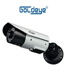 Camera IP GOLDEYE NWE564-IR