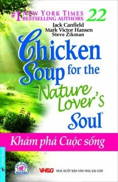 Chicken Soup For The Soul 22