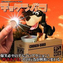 Chó ăn xu Choken Bako