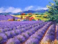 Tranh in canvas VTC LunaCV-0112 - cánh đồng hoa oải hương, 65 x 50cm