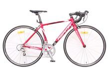 Xe đạp thể thao Asama RB-007