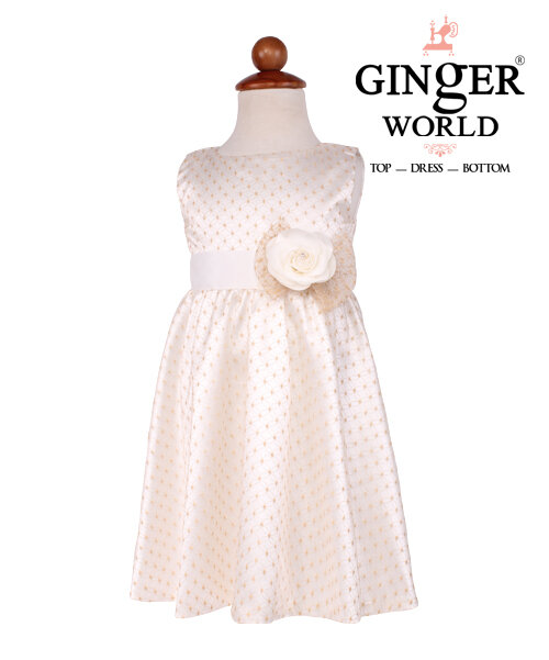 Đầm công chúa Ren in họa họa tiết nhũ vàng GINgER WORLD HQ353