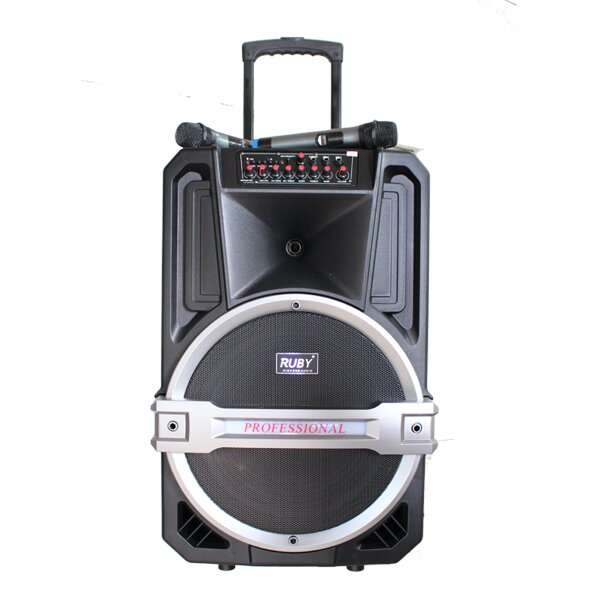 Dàn âm thanh di động RUBY R-1501A