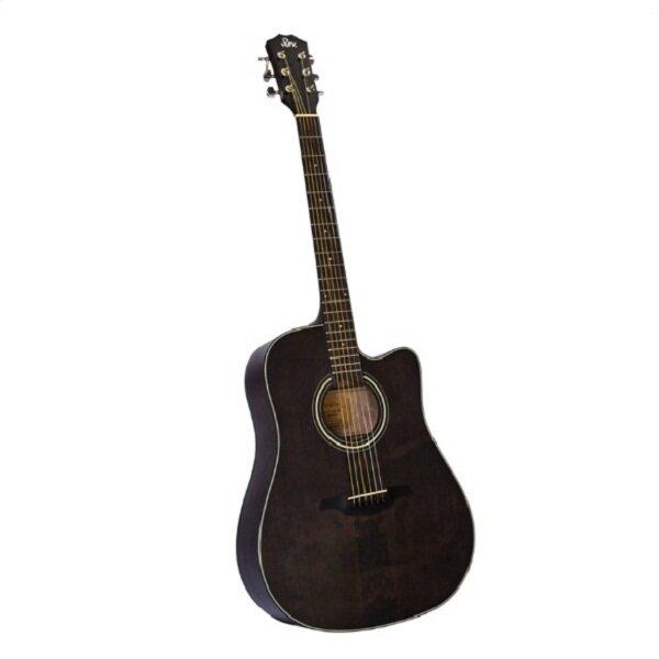 Đàn guitar Acoustic Rex RD12C
