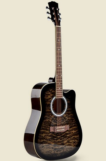 Đàn guitar Acoustic Vines VA-4130BKS