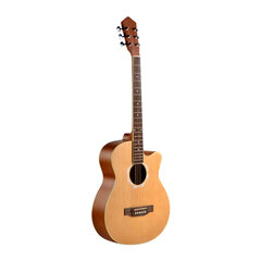 Đàn guitar acoustic Vines VA-4045N