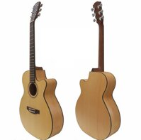 Đàn Guitar Ayers Acoustic ACSM