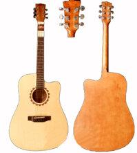 Đàn Guitar Dove BPm Acousic B-60CNM