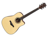 Đàn Guitar Ibanez AW3000CE