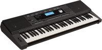 Đàn organ Roland EX20A