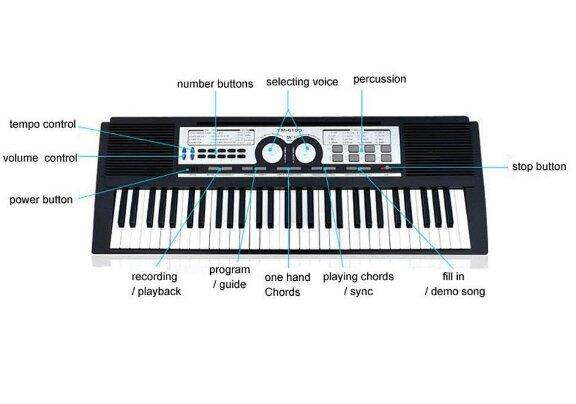 Đàn organ YM6100