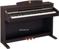 Đàn piano điện CLP-330M