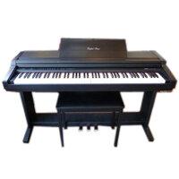 Đàn Piano Điện Kawai PW-300