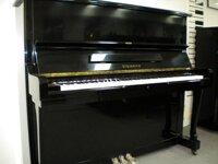 Đàn piano Steinrich