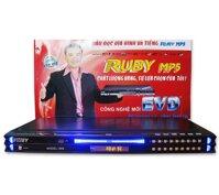 Đầu đĩa Ruby EVD-999