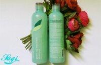 Dầu gội đầu Innisfree Green Tea Mint Fresh Shampoo 300ml