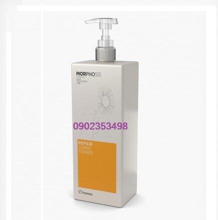 Dầu xả cho tóc khô xơ hư tổn Framesi Repair Morphosis - 1000ml