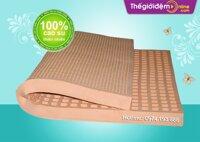 Đệm cao su Đồng Phú Friendly 100x200x5cm