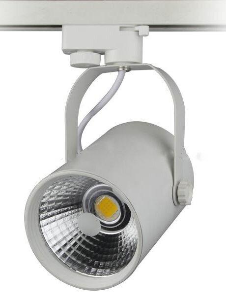 Đèn Led Rọi Ray COB - 20W