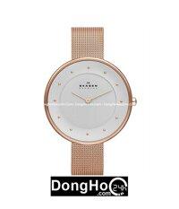 Đồng hồ nữ Skagen SKW2142/ SKW2141