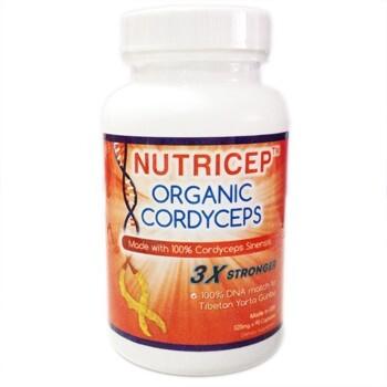 Đông Trùng hạ Thảo thượng hạng của Mỹ Nutricep Organic Cordyceps