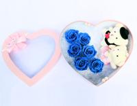 Hạnh phúc bên nhau – Hoa hồng Magic mẫu HQ7