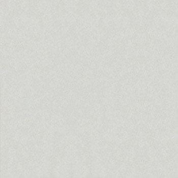 Gạch ốp lát Taicera G68025 (60x60)