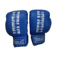 Găng tay tập boxing Everlast L2