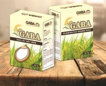 Gạo lứt nảy mầm GABA