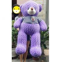 Gấu teddy cao 1m