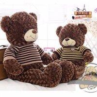 Gấu Teddy cao 1m2