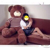 Gấu Teddy cao 1m4