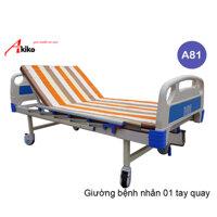 Giường bệnh nhân 1 tay quay Akiko A81