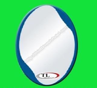 Gương ghép màu bầu dục Tùng Lâm TL-1531 (50x70cm)