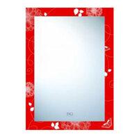 Gương phòng tắm Đình Quốc DQ 4189 (50x70)